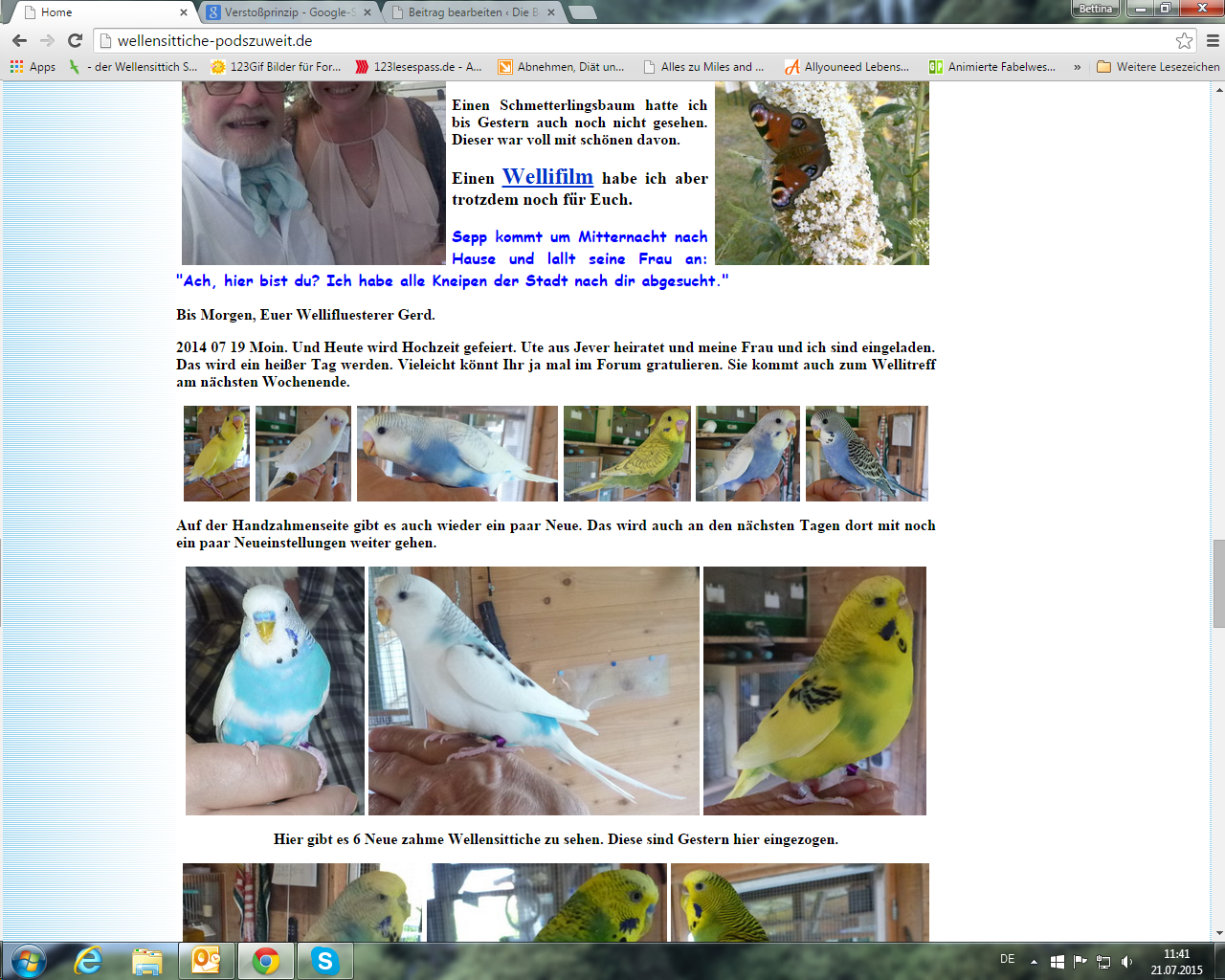 Screenshot 2015-07-21 11.41.58